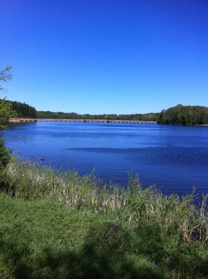 in the distance, bridge across Island Lake