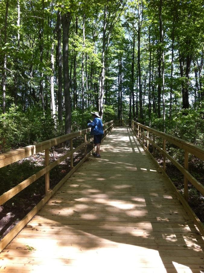 Tony on wooden bridge across island